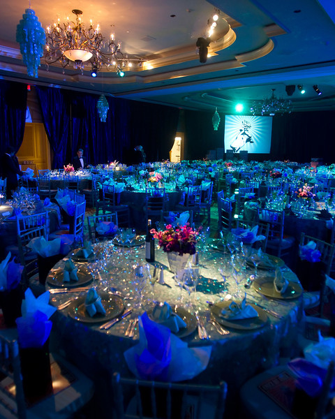 Projector TV, audio visuals, tables, chairs, lighting, staging by DC Party Rentals +1 202 436 5114